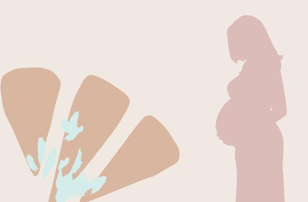 14 мифов о беременности